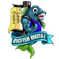 BigfishDM